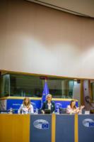 KK Bru 20 10 2018 parlament (1)
